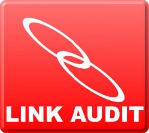 Link Audit